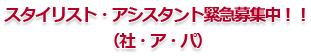 スタイリスト・アシスタント緊急募集中!!(社・ア・パ)